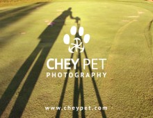 Chey Pet Photography